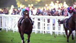 The Frankel Story - BBC Sport