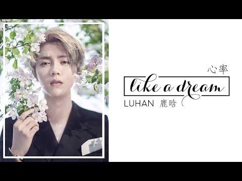 LUHAN (鹿晗) | Like a Dream (心率) [chinese/pinyin/english lyrics]