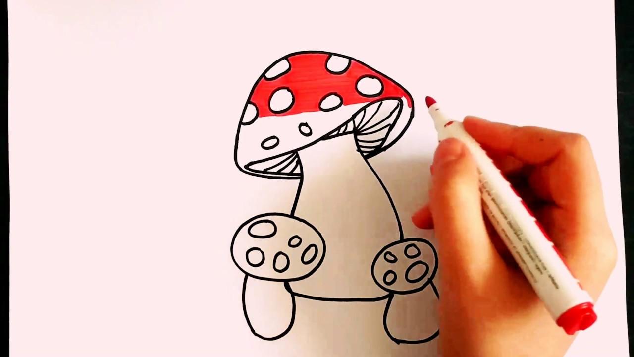 Mantar Nasil Cizilir Mantar Cizimi How To Draw Mushroom Renkli