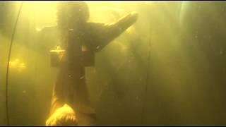 Potápění sochy na Slapech