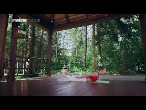 Половинная поза кузнечика. Ардха шалабхасана – Позы йоги для начинающих.