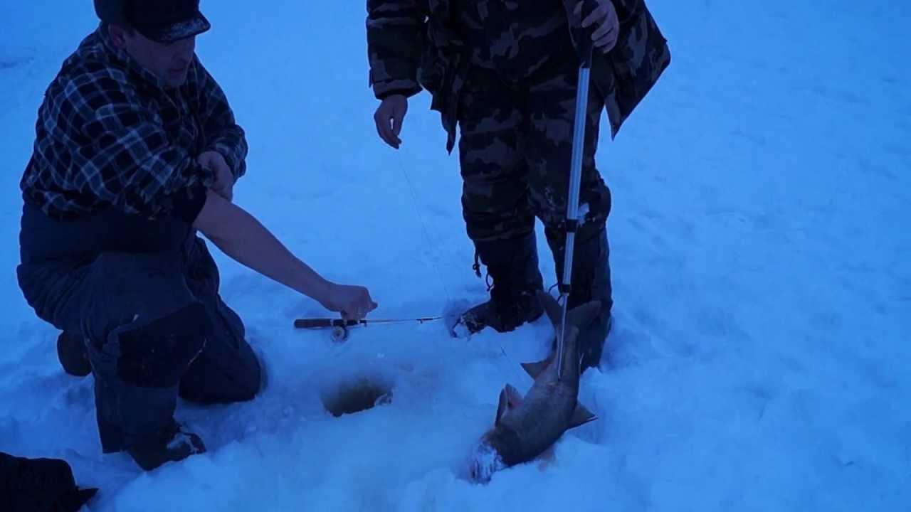 Зимняя рыбалка №3.MPG
