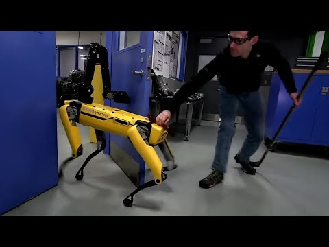 Human v robot dog: Boston Dynamics takes on its door-opening SpotMini