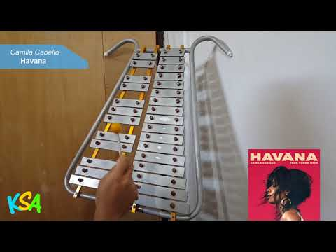 Camila Cabello - Havana (Lira Cover)