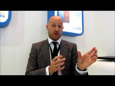 Brent Thurrel, Vice President EMEAI & APAC, Beyond Trust at Gitex 2013,Dubai