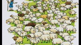 Библейские рассказы о животных.  Потерянная овца.  Рассказы о животных
