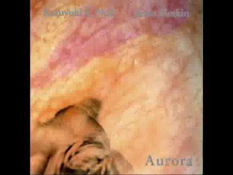 KK Null and James Plotkin - Aurora (1996) Full Album