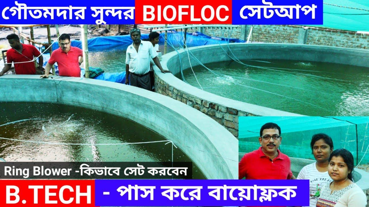 পরিকল্পিত ভাবে বায়োফ্লক পদ্ধতিতে তেলাপিয়া মাছ চাষ // Biofloc Fish Farming in India