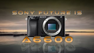 Did the Sony a6600 surprise you?