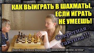 Как выиграть в шахматы, если играть не умеешь!