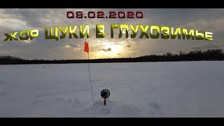 Бешеный клёв щуки в Глухозимье Ловля щуки на жерлицы Рыбалка 09 02 2020