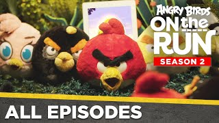 Angry Birds On The Run S2 | All Episodes