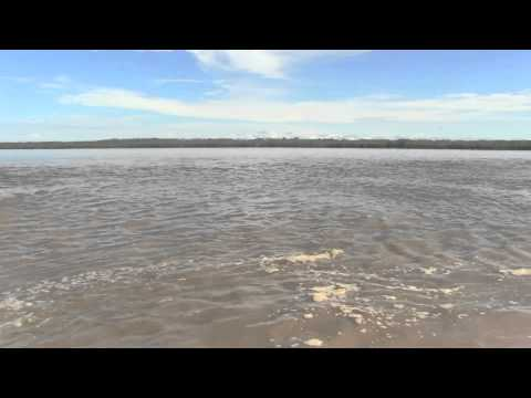 CONFLUENCE of the AMAZON, MARANON and UCAYALI RIVERS - Ripper Films
