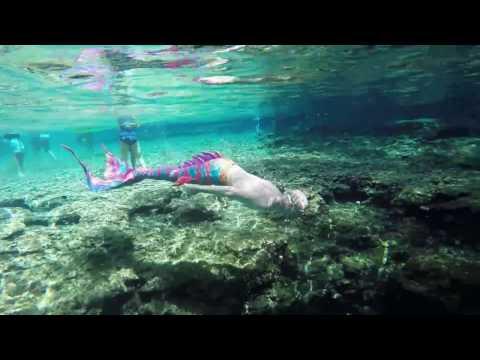 Mermaids & Mermen Swim Wild in Natural Florida Spring Spotted by Snorkelers