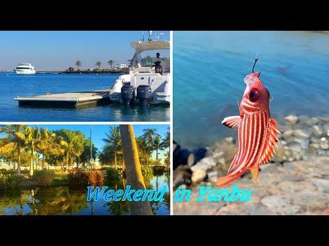 YANBU-SAUDI ARABIA💚Trip to Yanbu🤍Beach/Boating/Lake/Scenery-Weekend.