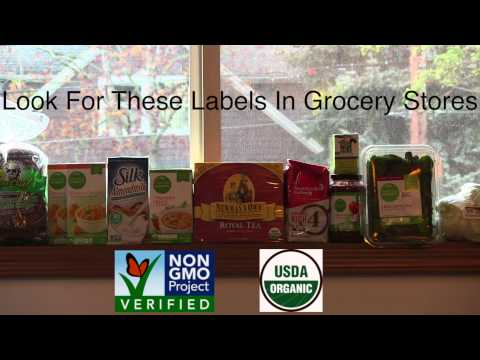 Look for the NON GMO Project Verified or USDA Organic labels in grocery stores.