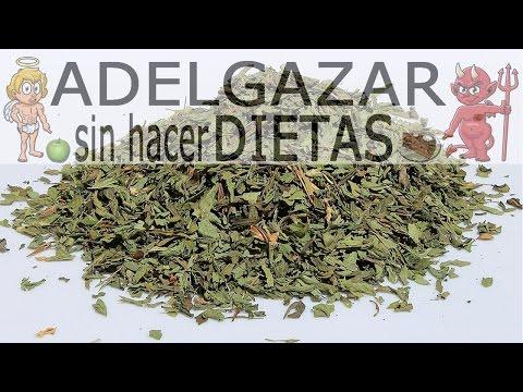 CÓMO HACER STEVIA LÍQUIDA # ADELGAZAR SIN HACER DIETAS