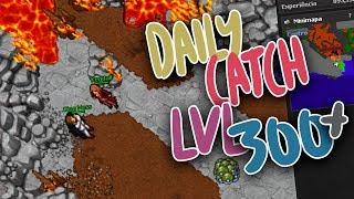 La Daily Catch de lvl 300+ -PokexGames Español