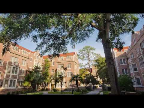 University of Florida - Five Things I Wish I Knew Before Attending