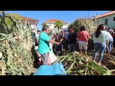 Desfolhada  - Paroquia de Sobradelo da Goma