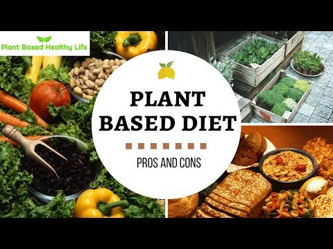 Pros and Cons of a Plant Based Diet
