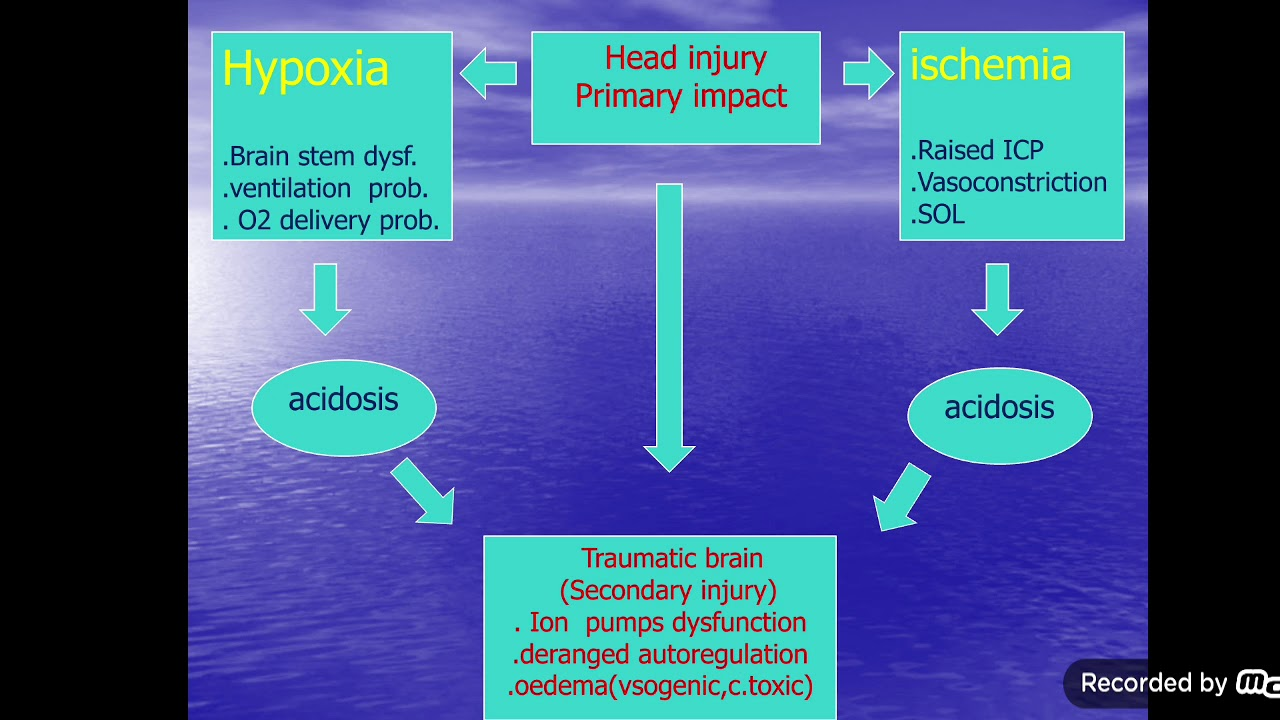 Download head injuries part 2 and 3
