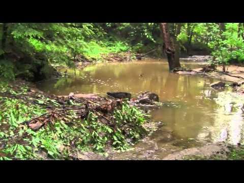 2012 Gilsum Floods