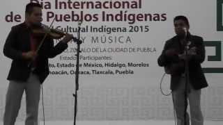 Trío Polifonía Huasteca de Huehuetla, Pue. Festival Cultural Indígena 2015