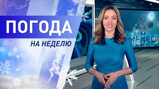 Погода на неделю 8 – 14 февраля 2021. Прогноз погоды. Беларусь | Метеогид