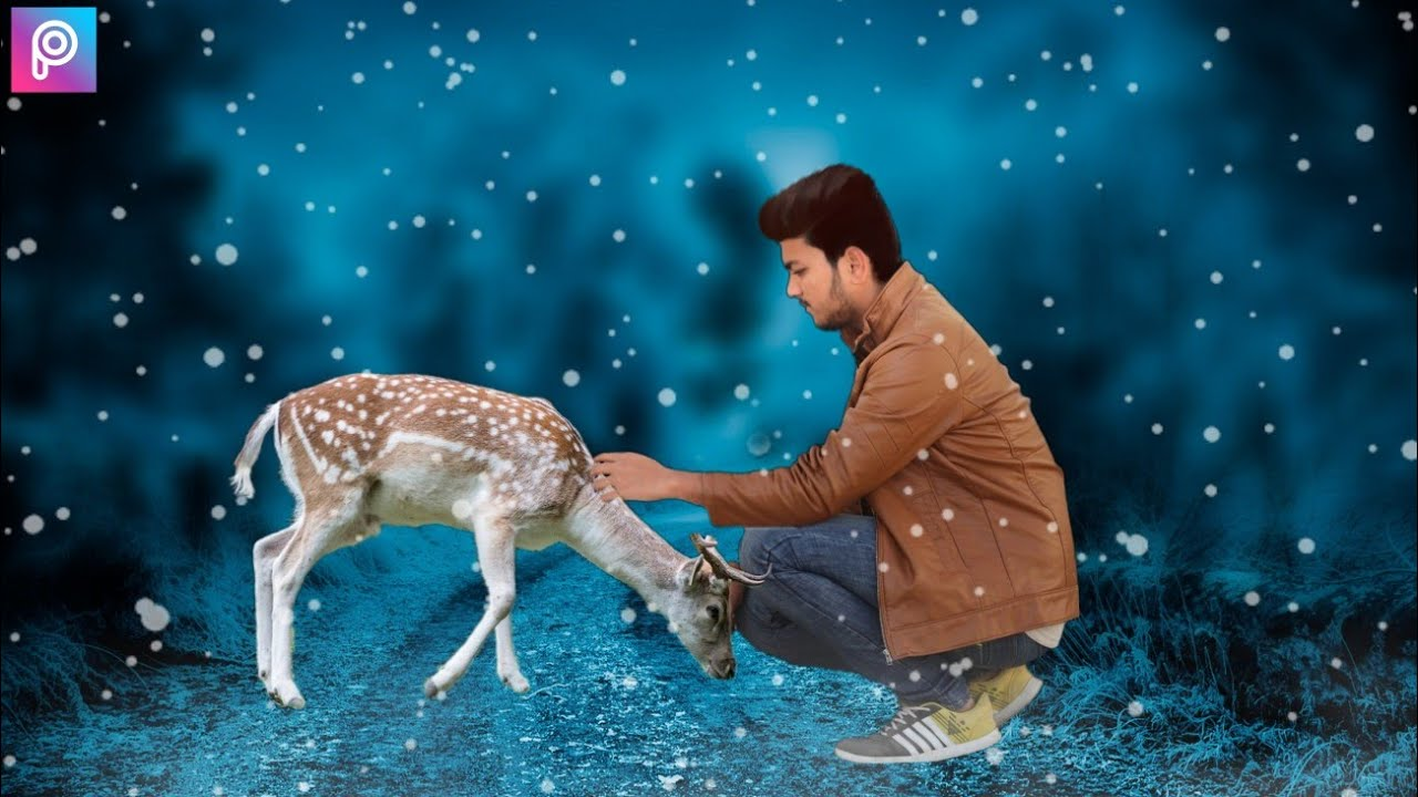 animal lover photo editing tutorial || nature photo editing picsart