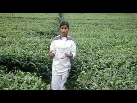 From Tea Garden In Assam To London Olympics