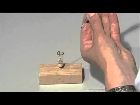 Artificial insemination of honeybees
