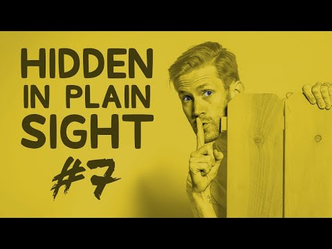 Can You Find Him in This Video?  Hidden in Plain Sight #7 [#TeamTrees]