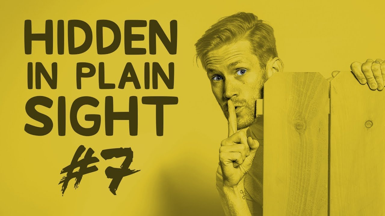 Can You Find Him in This Video? • Hidden in Plain Sight #7 [#TeamTrees]