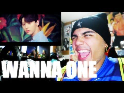Wanna One - Energetic & Burn It Up MV Reaction