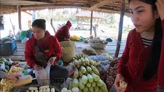 ตลาดของป่า หนูพุก กะปอม ไข่มดแดง เมืองไซพูทอง สปป.ลาว - แม่โขง ออนทัวร์  -