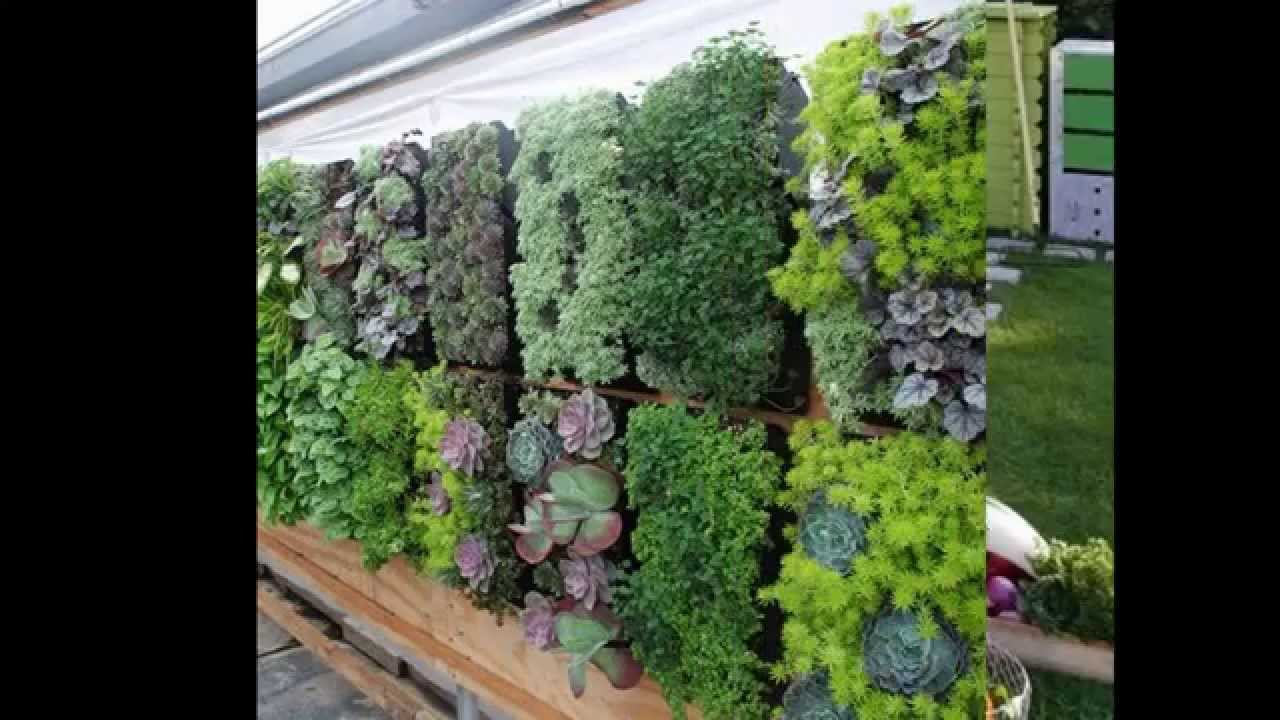Creative Garden ideas for small spaces - YouTube