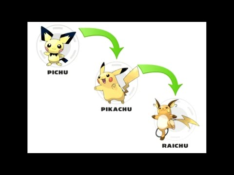 All kinds of Pokémon and their evolution #1