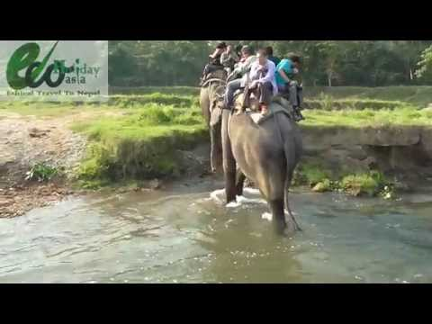Elephant Back Safari in Chitwan National Park with Eco Holiday Asia
