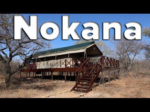 Nokana Safari Camp - Kruger National Park, South Africa