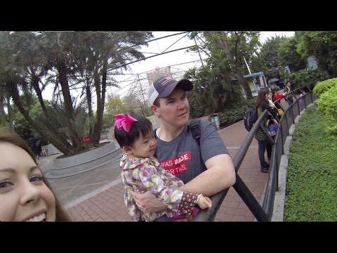 CHINA ADOPTION (Flashback at the zoo)