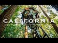 Is this the World's Best Tree House? | Redwood Forest, California