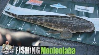 SUNSHINE COAST estuary fishing with Aaron Trims   CoastfishTV Ep4