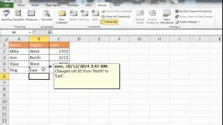 Use Track Changes Feature in Excel