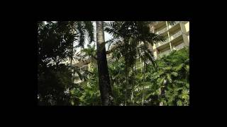 Hotel Hilton Trinidad & Conference Center - Video Oficial Español