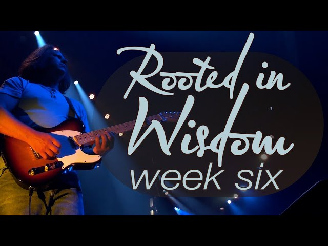 Rooted in Wisdom | Week 6 | Sunday Mass for July 25