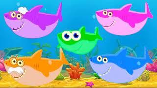Акуленок песенки для детей   про животных  Развивающие и обучающие мультики