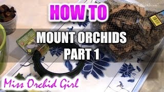 Mounting Orchids Part 1 - What you need and where to get them from