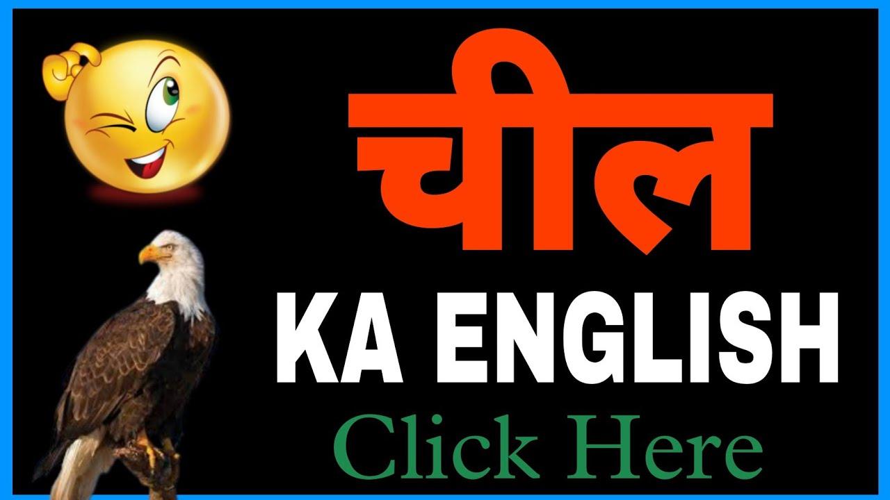 À¤š À¤² Chil Ka English Kya Hota Hai Chil Ko English Mein Kya Kahate Hein Youtube Chashme ko english mein kya kehte hain. chil ko english mein kya kahate hein