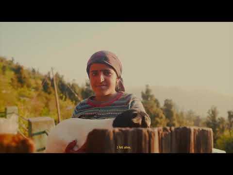 Hippie Travel Portfolio video